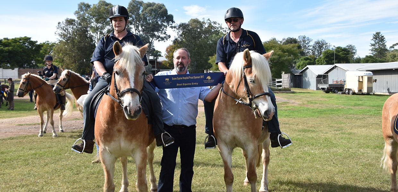 prize winning Haflinger Horses in Australia